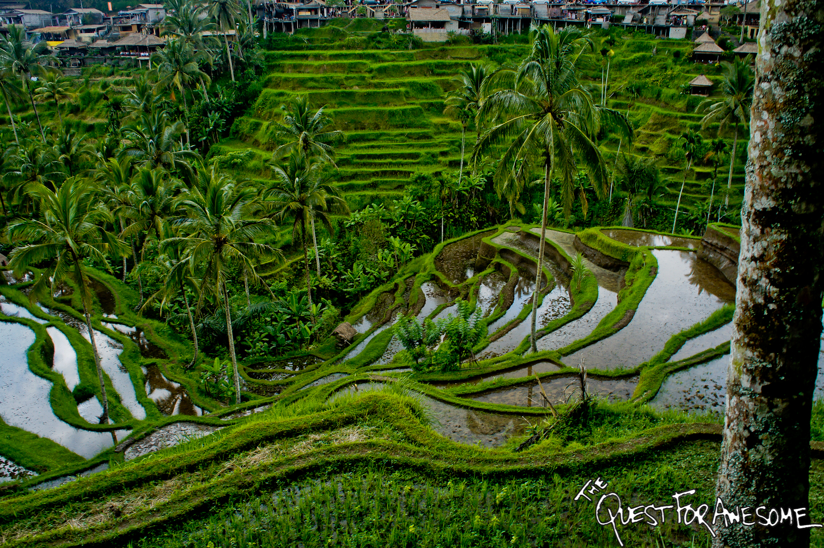 The Top 20 Photos from my Trip to Bali and Lombok, Indonesia