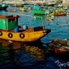Cheung Chau Boat